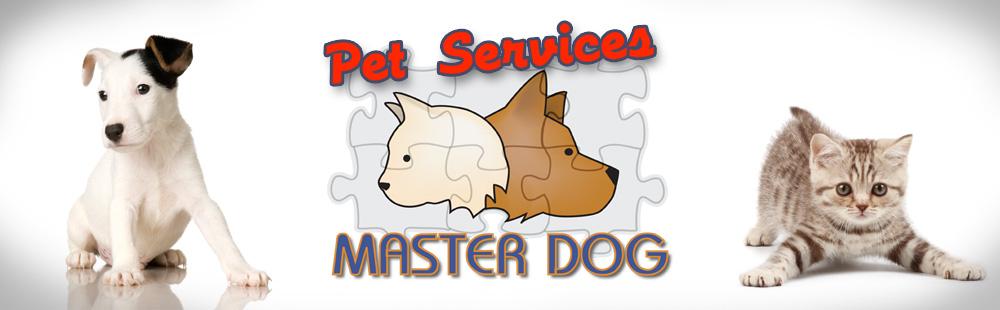 Master Dog Pet Services